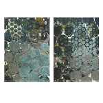 Callais Acrylic Floating Wall Art Set of 2