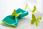 Green Butterfly Napkin Holder Set of 4